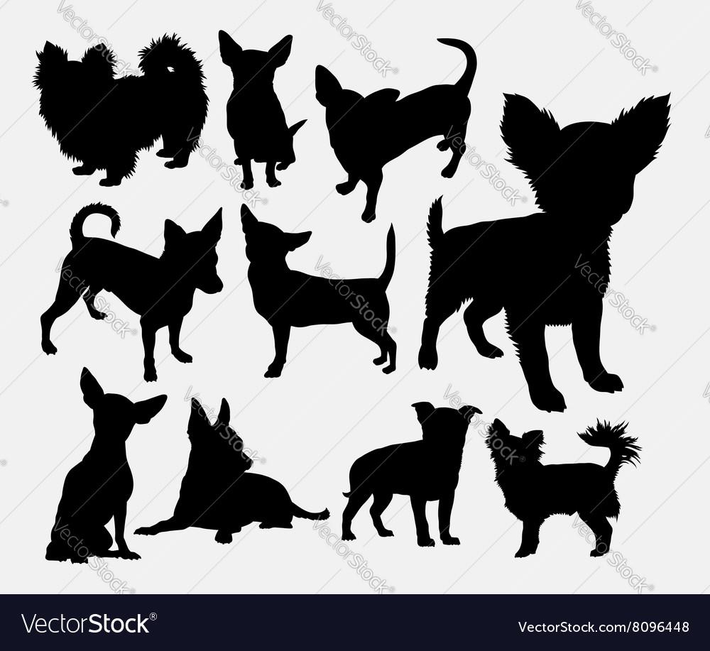 Chiwawa dog pet silhouette