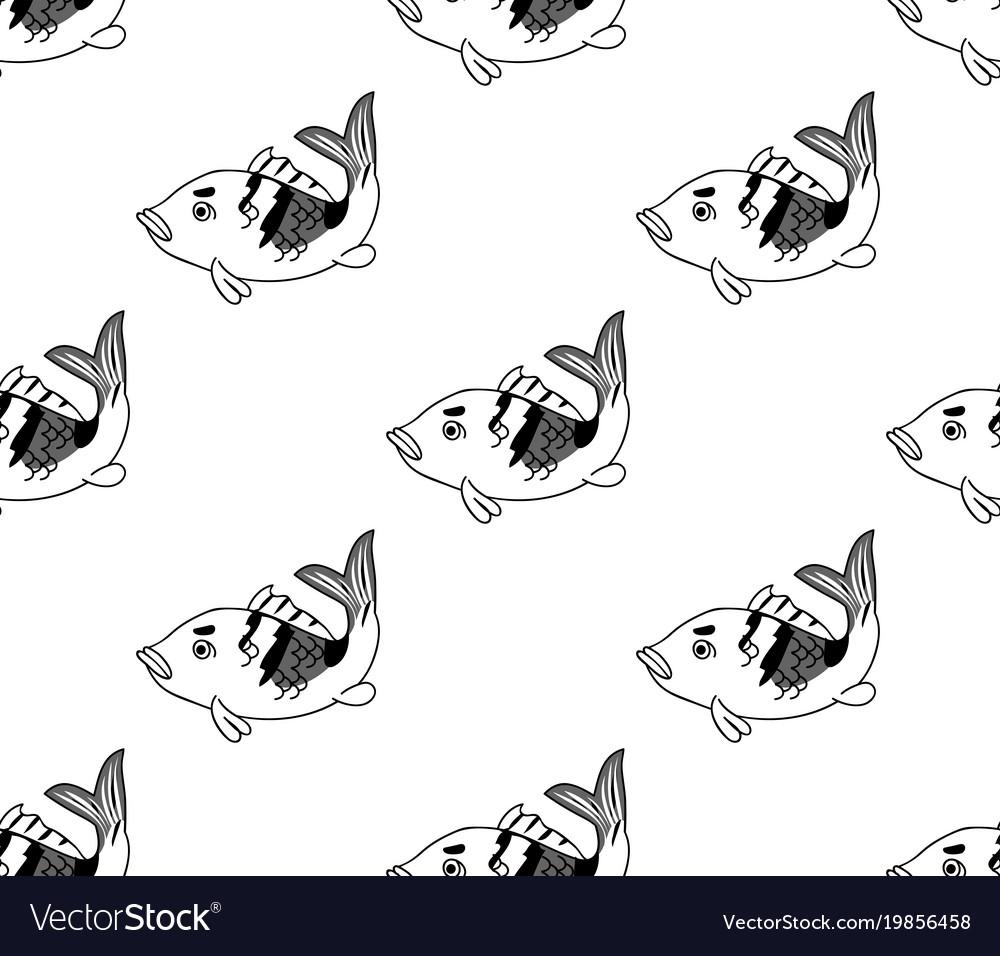 Carp seamless on white background vector image