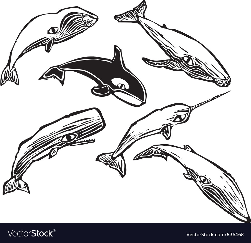 Whale Group