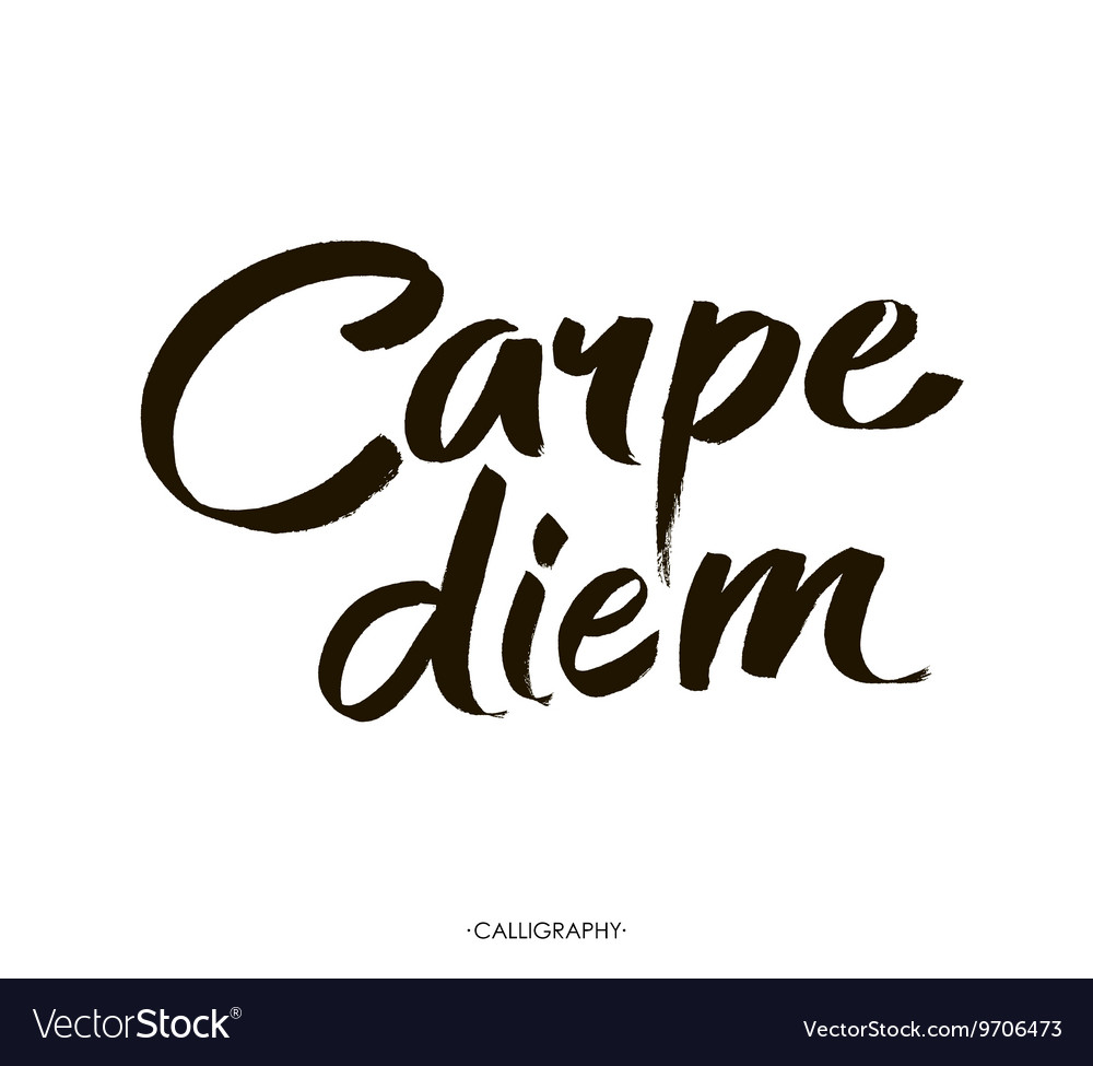 Carpe diem In latin means Catch the moment Hand Vector Image
