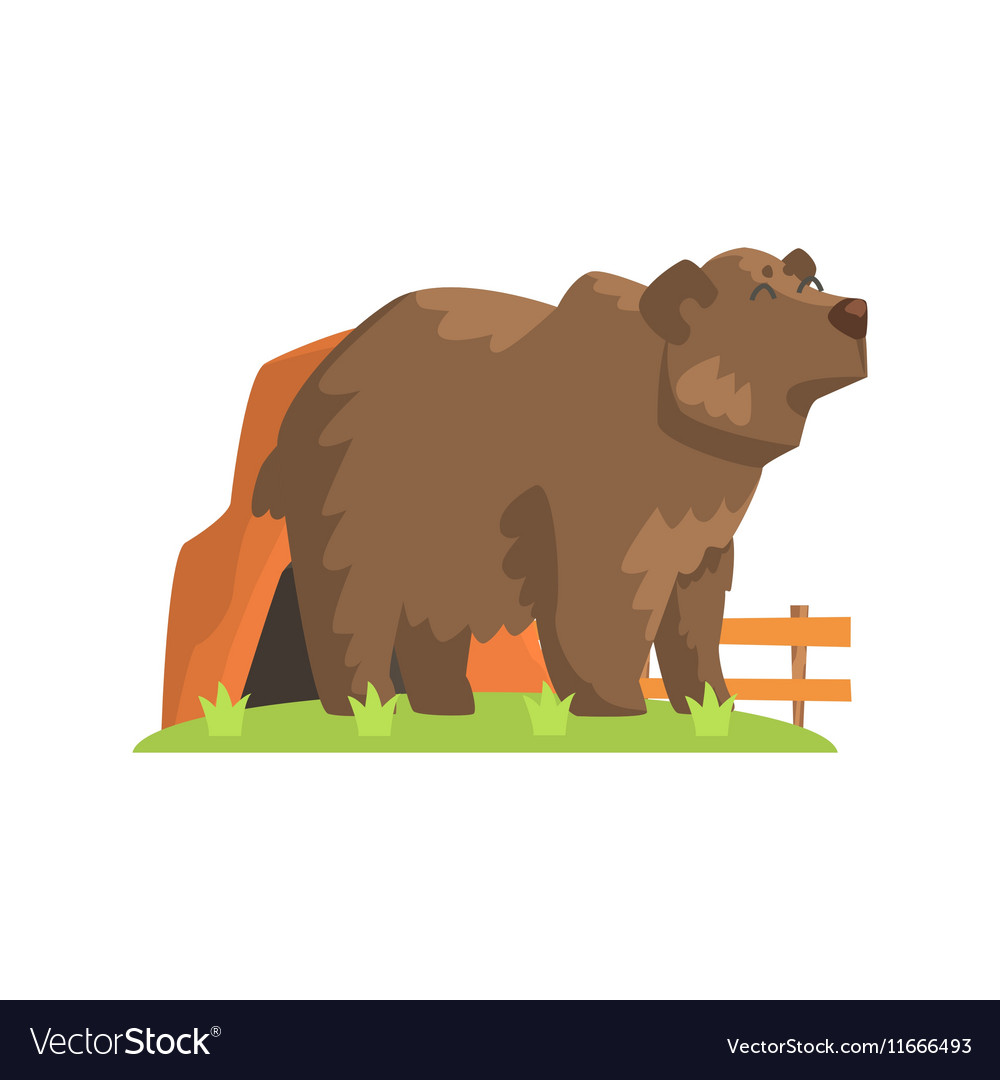 Brown Bear Coming Out Of Bear Den Standing On