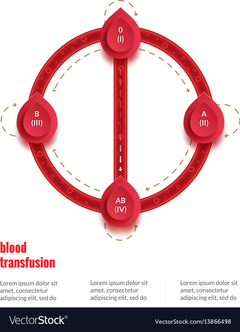 Group and type infographic transfusion scheme for vector image
