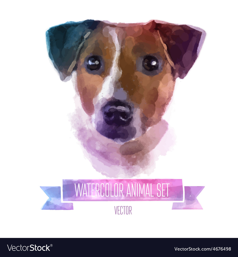 Set of watercolor Cute jack vector image