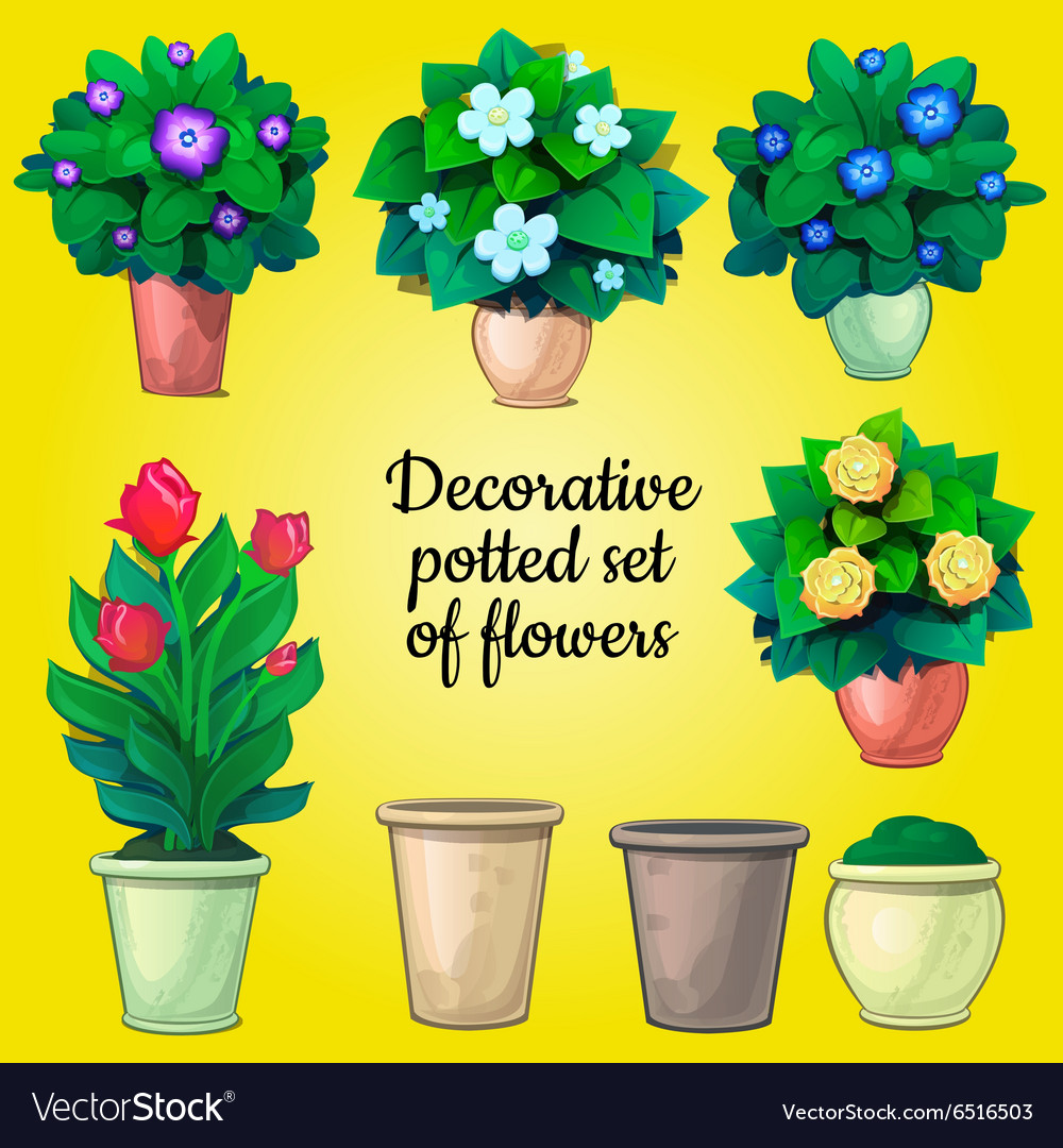 Set of decorative plants flowers and empty pots vector image