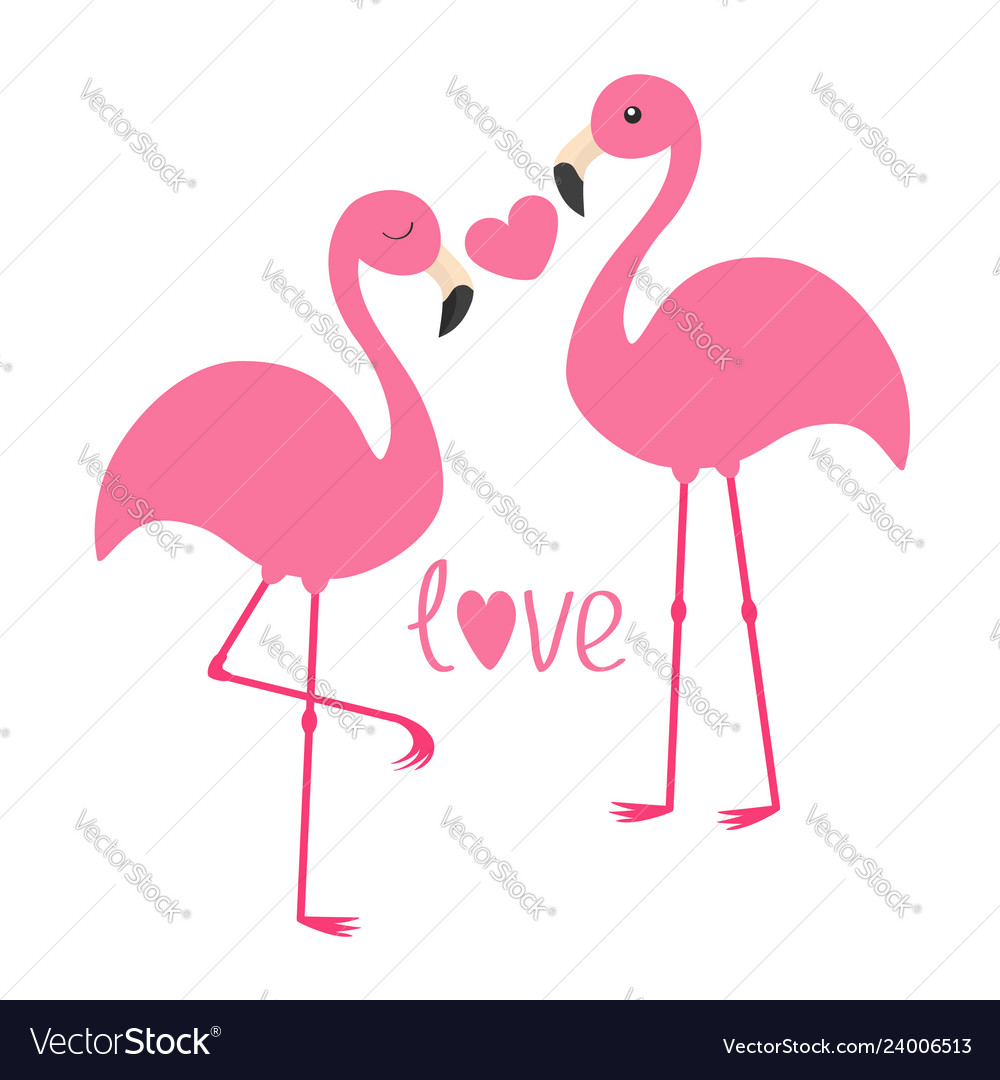 Pink flamingo couple and heart word love exotic