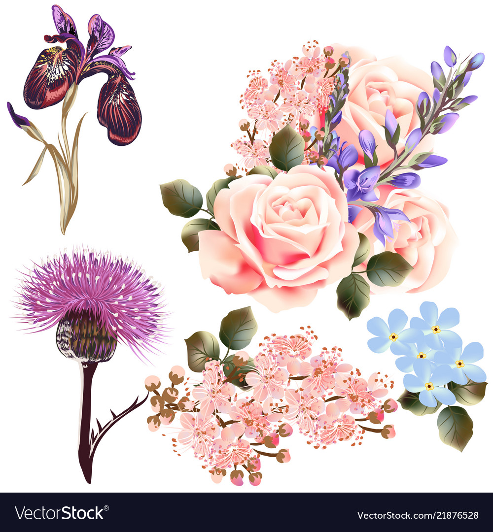Set of detailed colored flowers