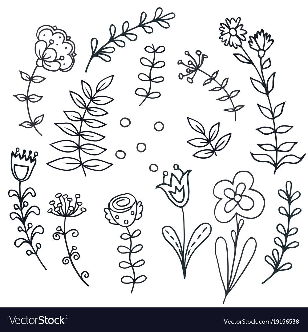 Hand drawn floral set with leaves flowers vector image