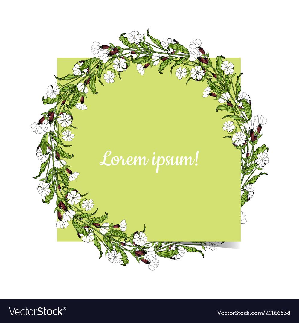 White campion flowers round wreath on white