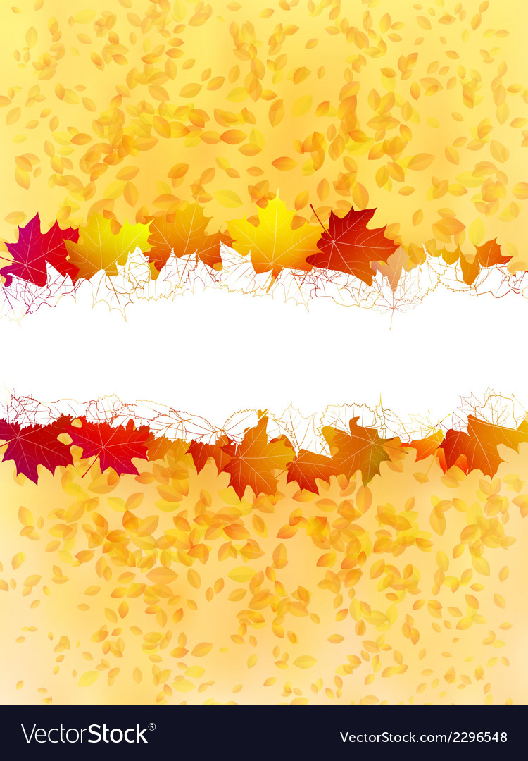 Colorful autumn leaves on a old paper plus EPS10