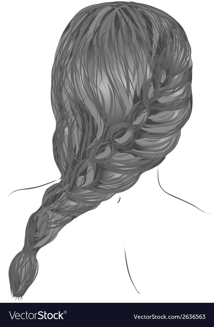 Plait hair vector image