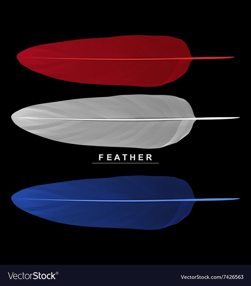 Set of feathers isolated on black background