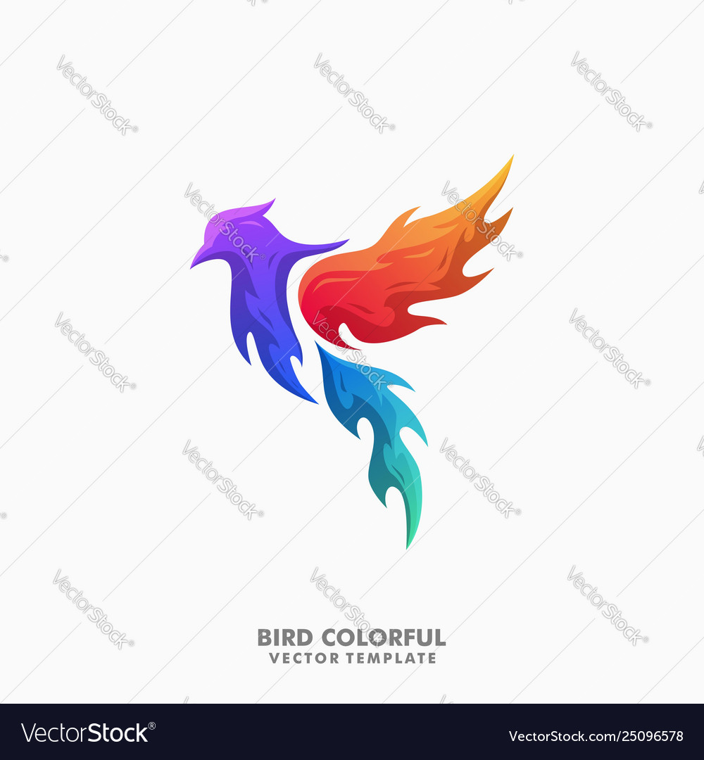 Bird colorful concept template
