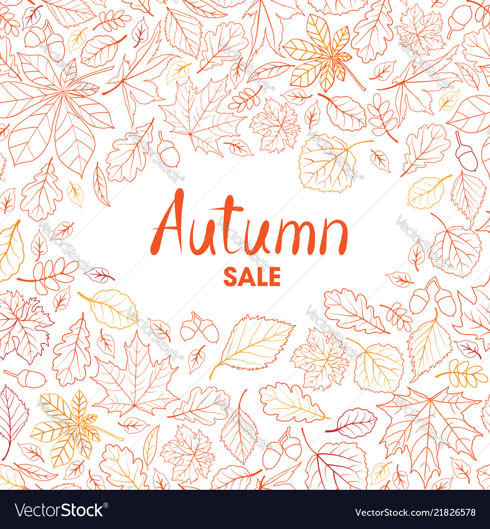Fall leaf nature background autumn leaves pattern