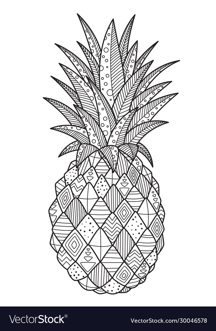 Pineapple Adult Coloring Pages Vector Images (25)