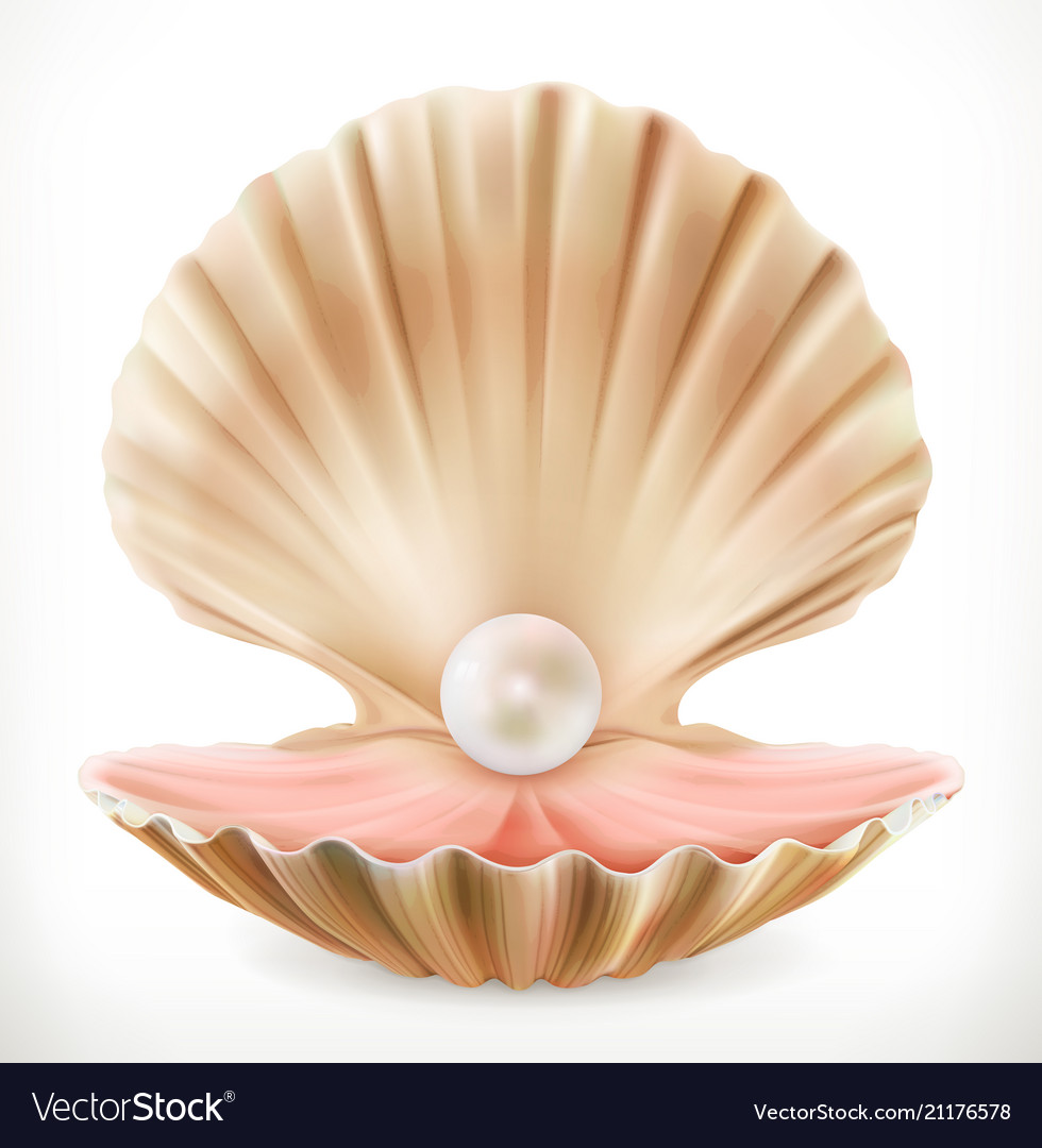shell with pearl clam oyster 3d icon royalty free vector
