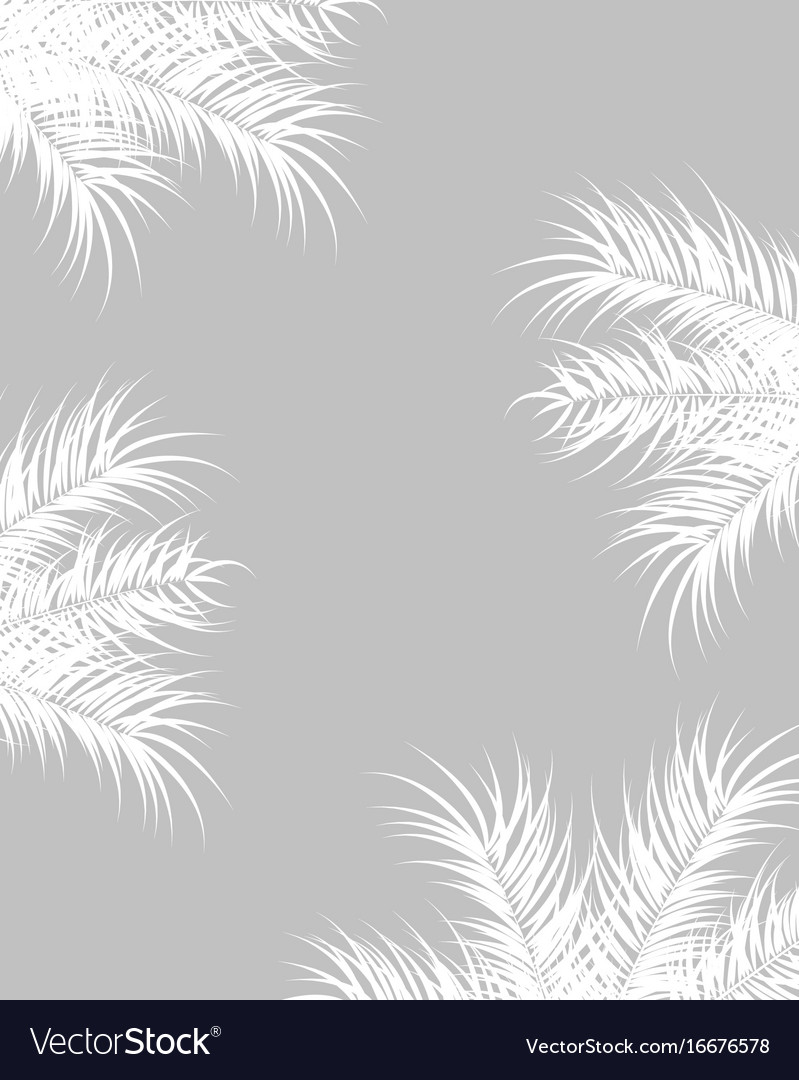 Tropical design with white palm leaves and plants