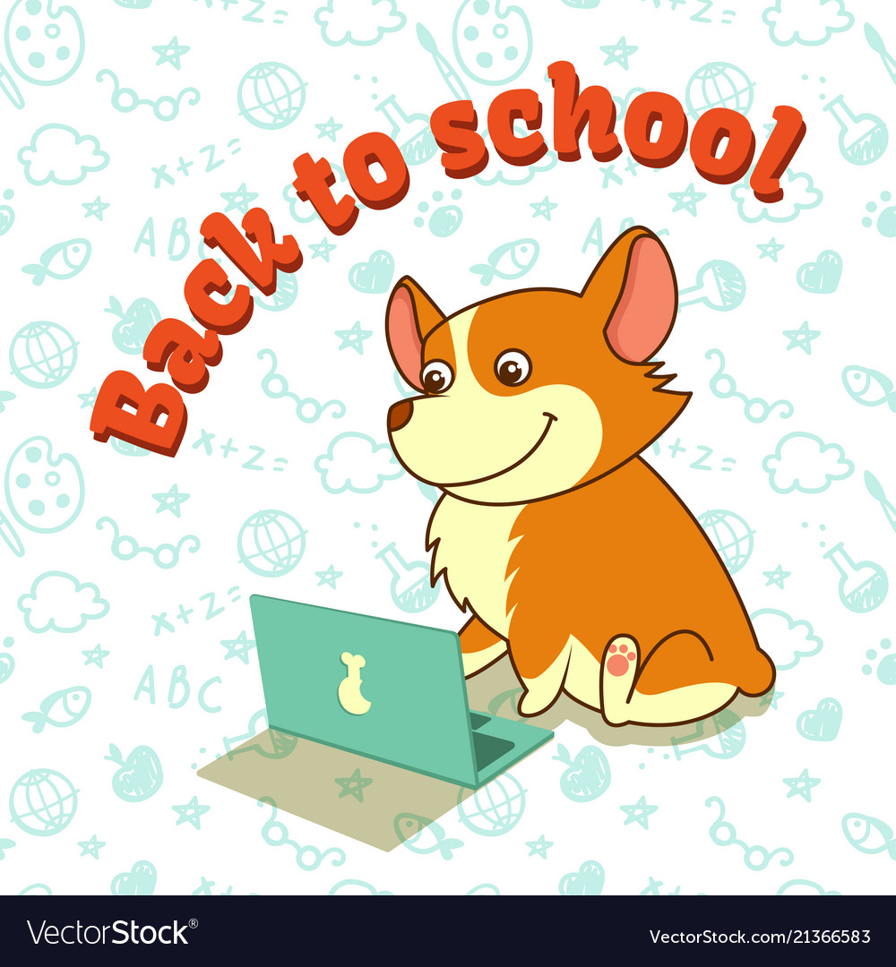 Cute puppy of welsh corgi learning with laptop