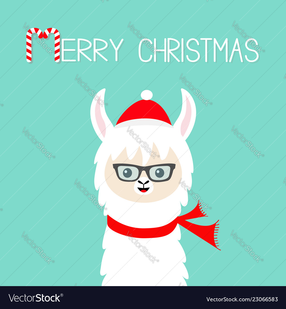 Llama Christmas.Merry Christmas Llama Alpaca Baby Face Wearing
