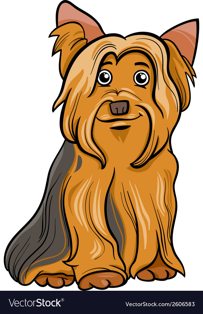 Yorkshire terrier dog cartoon