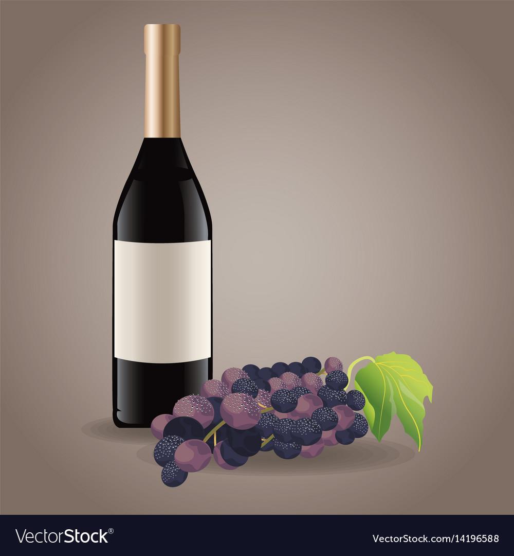 Bottle wine grape drink image