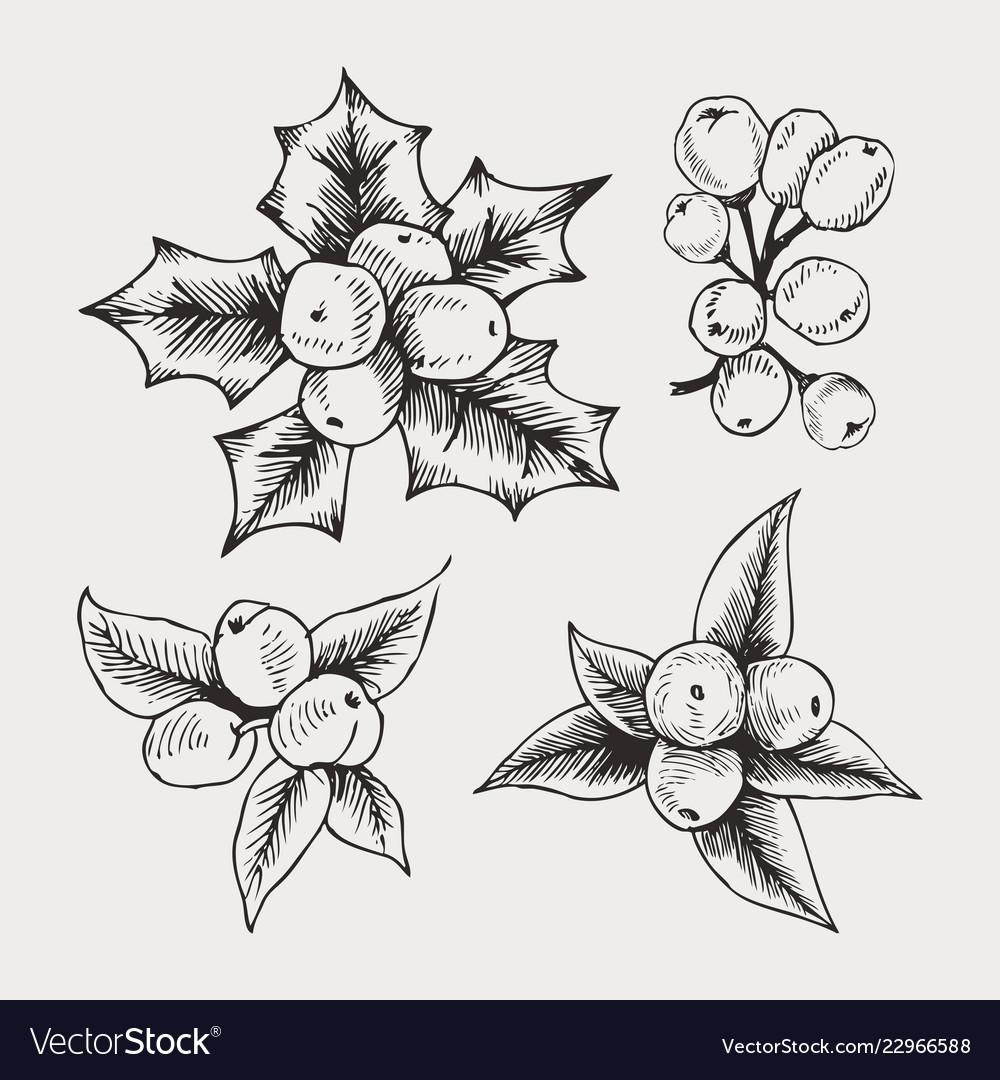 Vintage set of hand drawn mistletoe