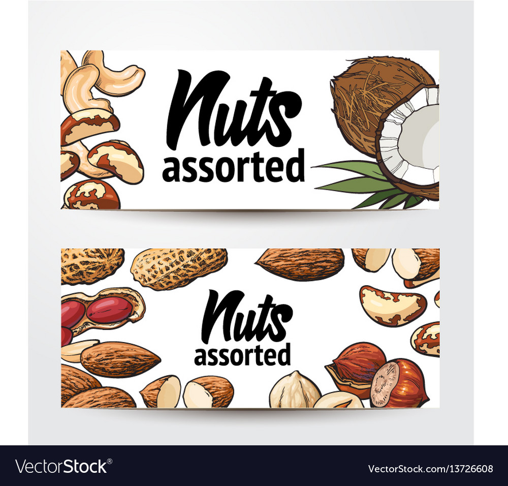 Banner design with coconut cashew peanut