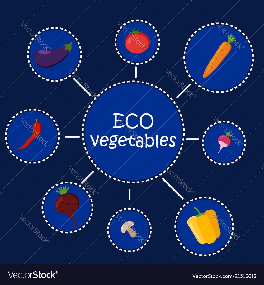 Eco vegetables healthy food infographic
