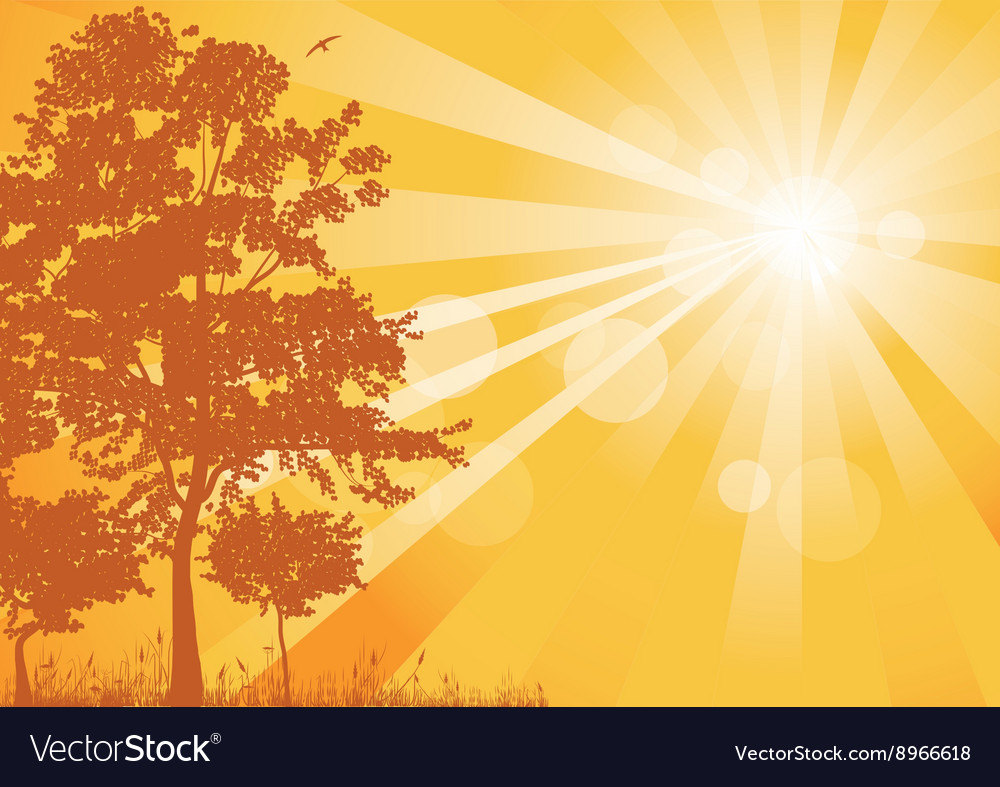 Yellow summer background with rays