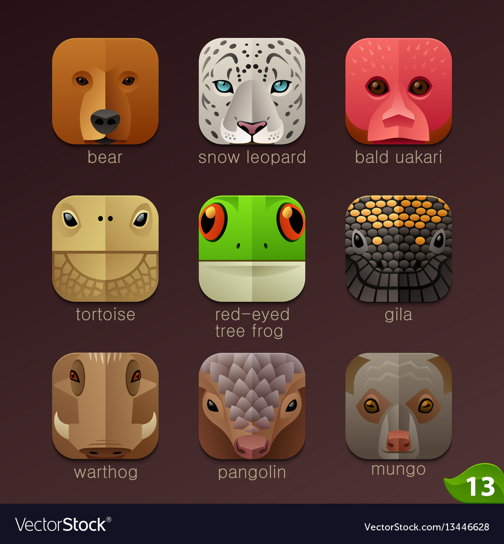 Animal faces for app icons-set 13 vector image