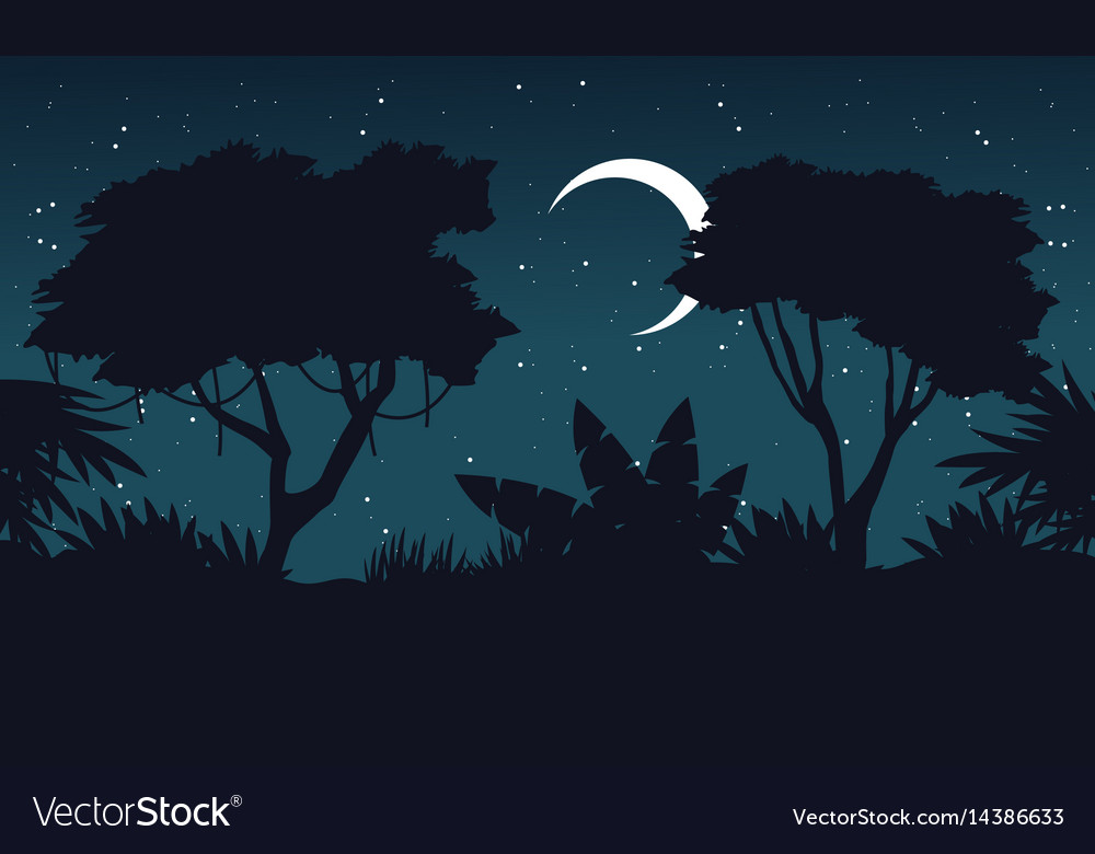 At night jungle scenery silhouette theme vector image