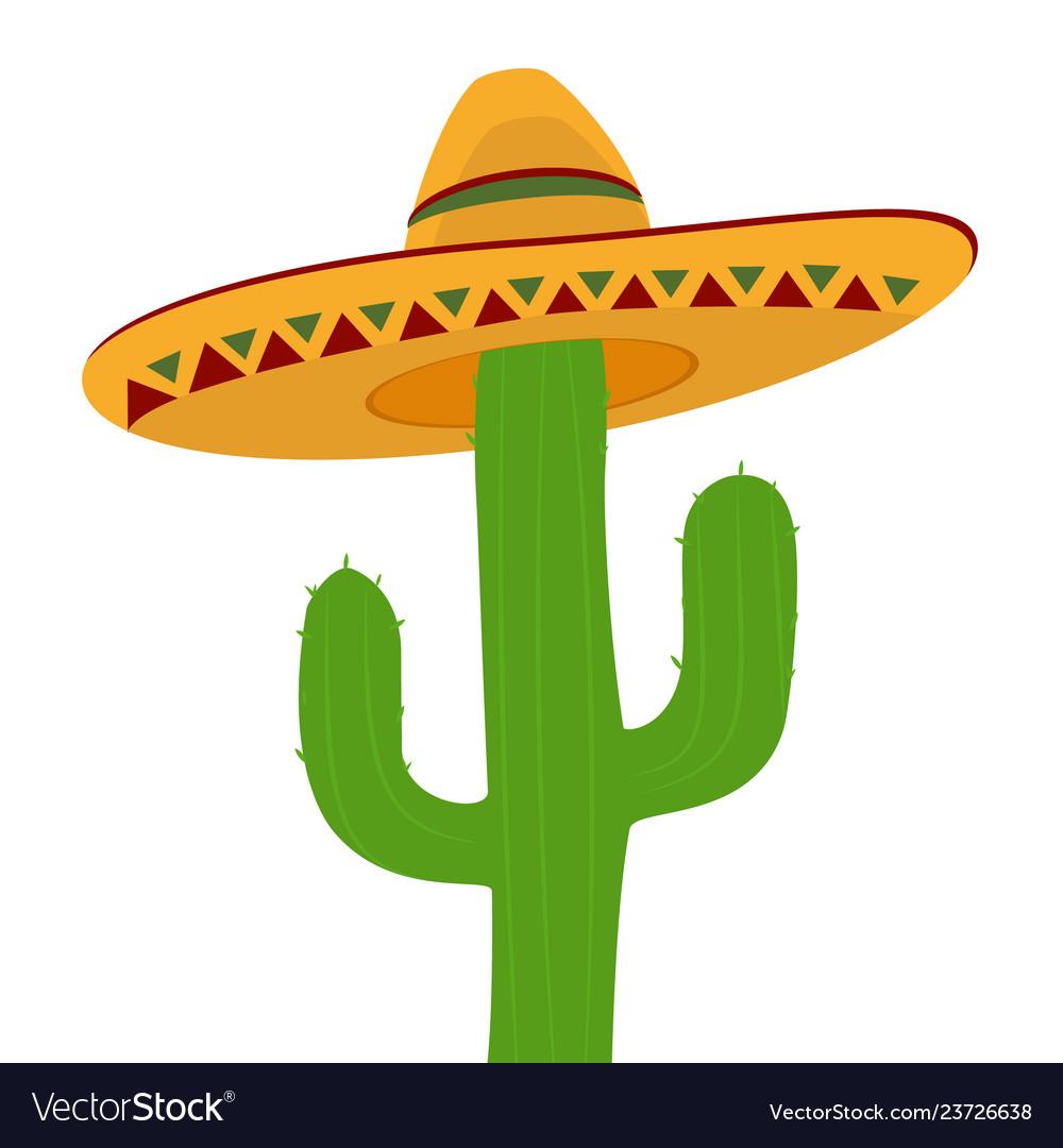 Cactus in sombrero isolated on white background