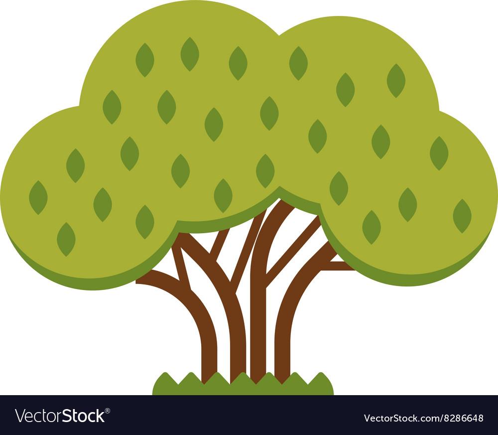 Green tree full of red apple garden summer organic