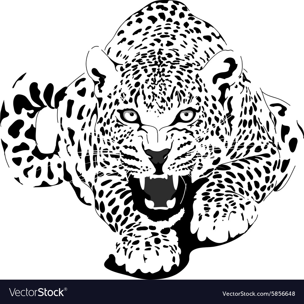 Leopard in black interpretation