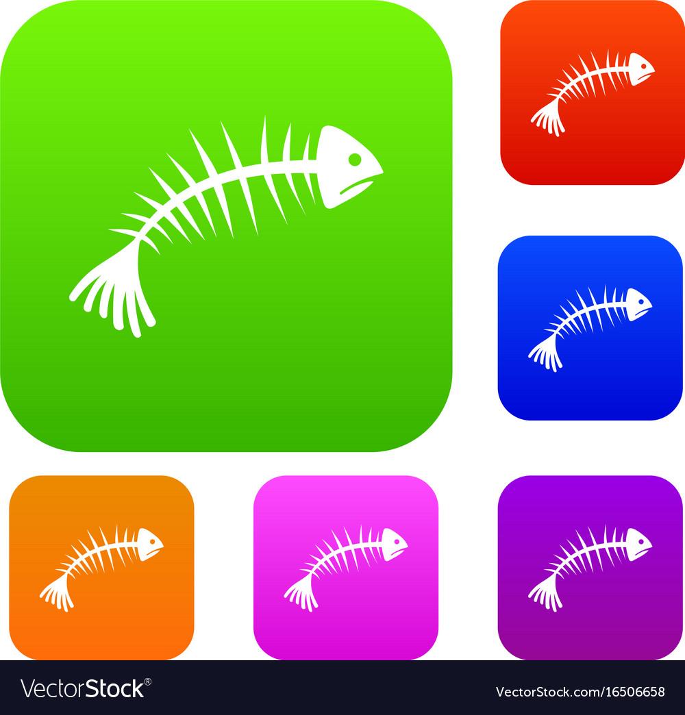 Fish bones set collection vector image