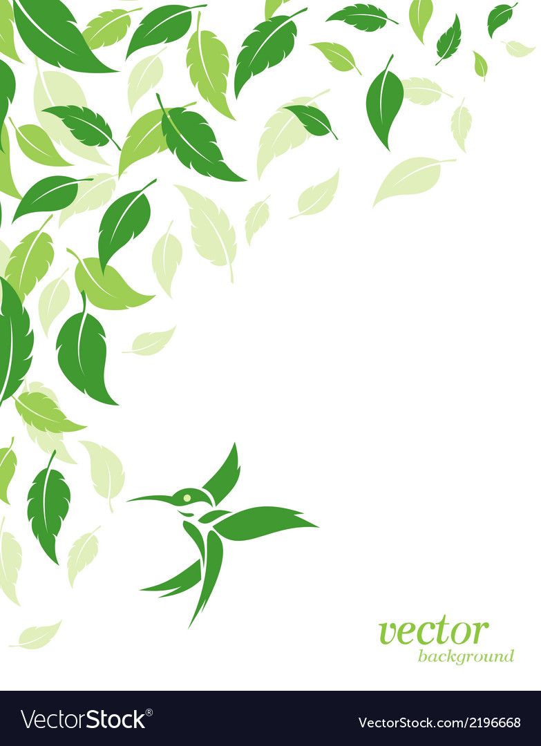 Abstract green leaves and hummingbirds background