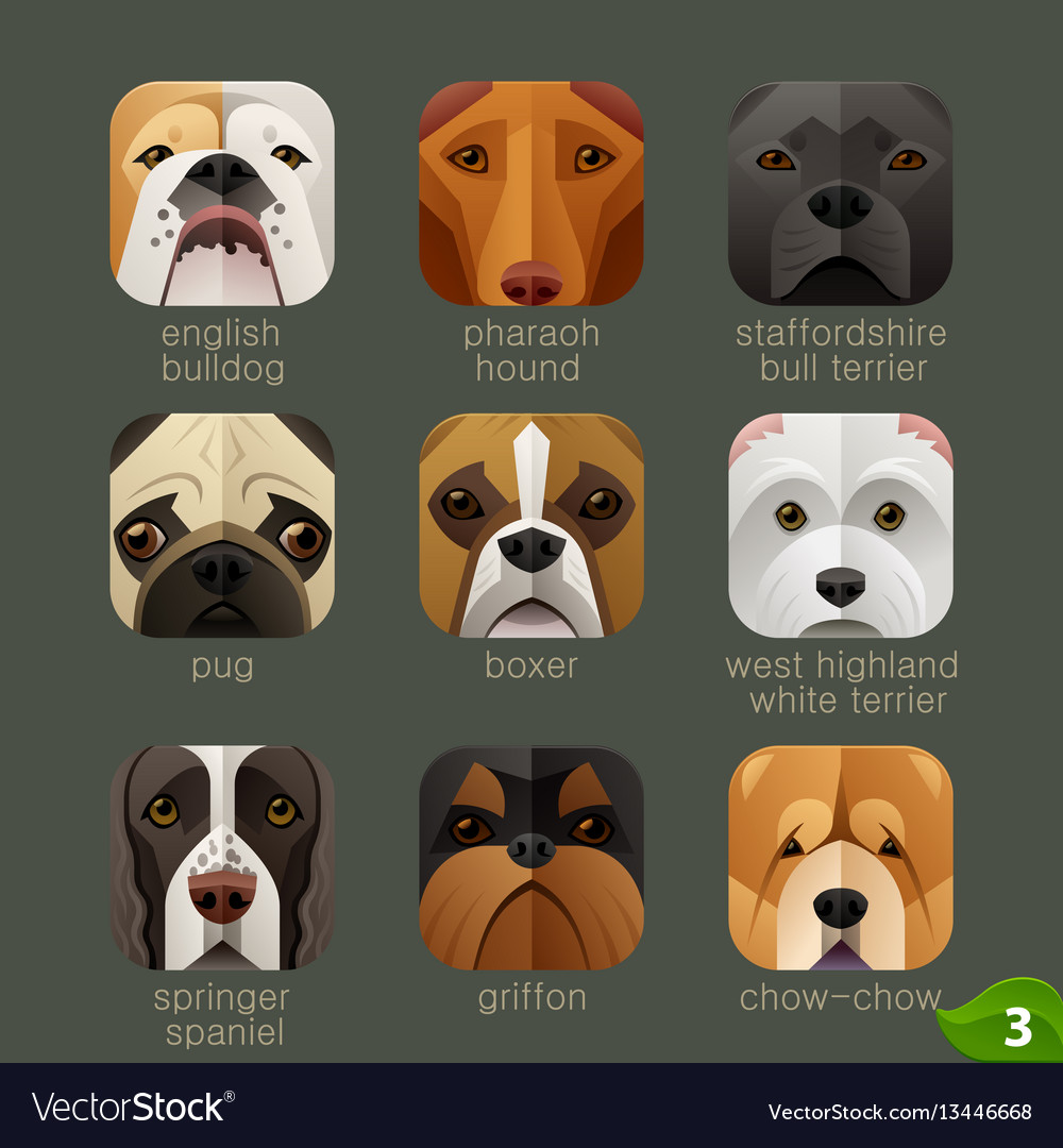 Animal faces for app icons-dogs set 2