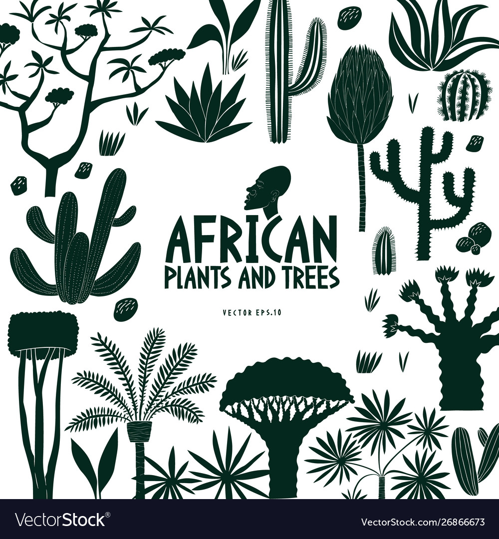 Fun hand drawn african plants and trees design