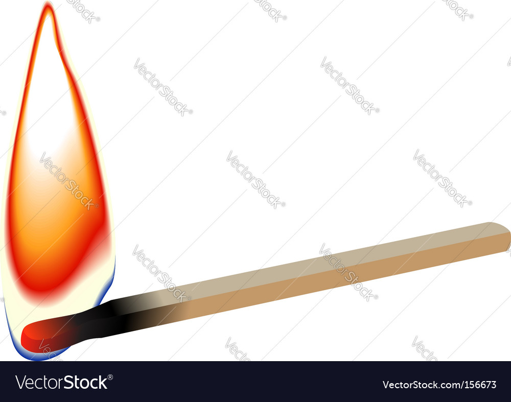 Match stick flame vector image