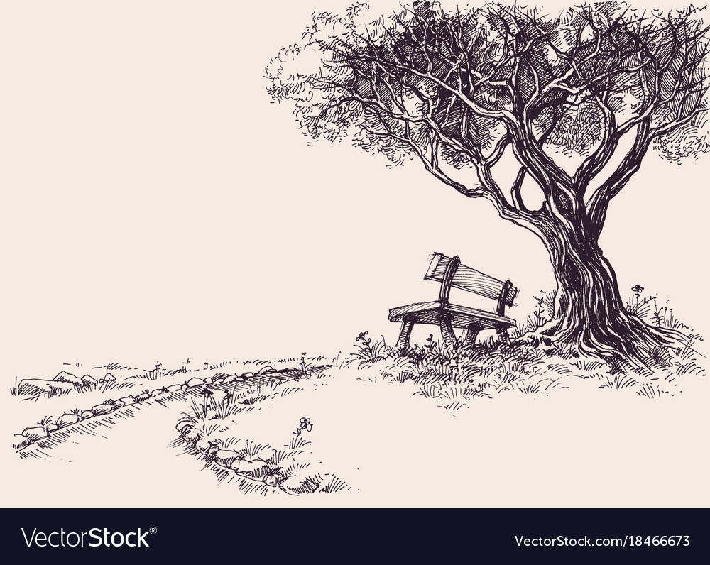 Park sketch a wooden bench under the tree