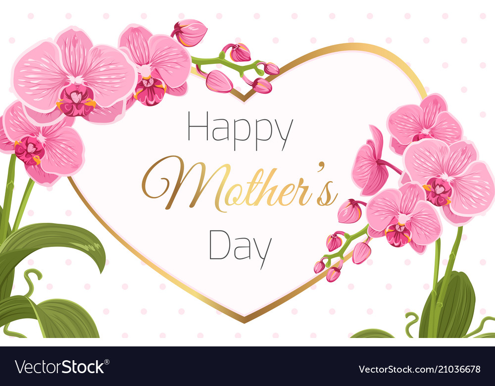 mothers day card template orchid flowers heart vector image