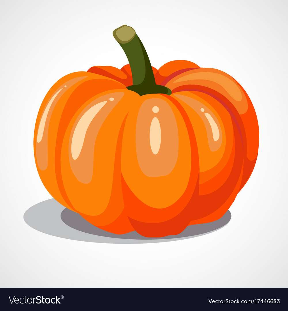 Cartoon orange pumpkin vector image