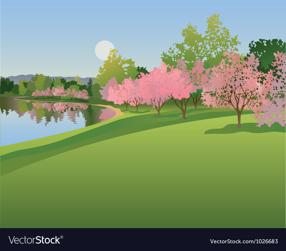 Lake with cherry blossoms