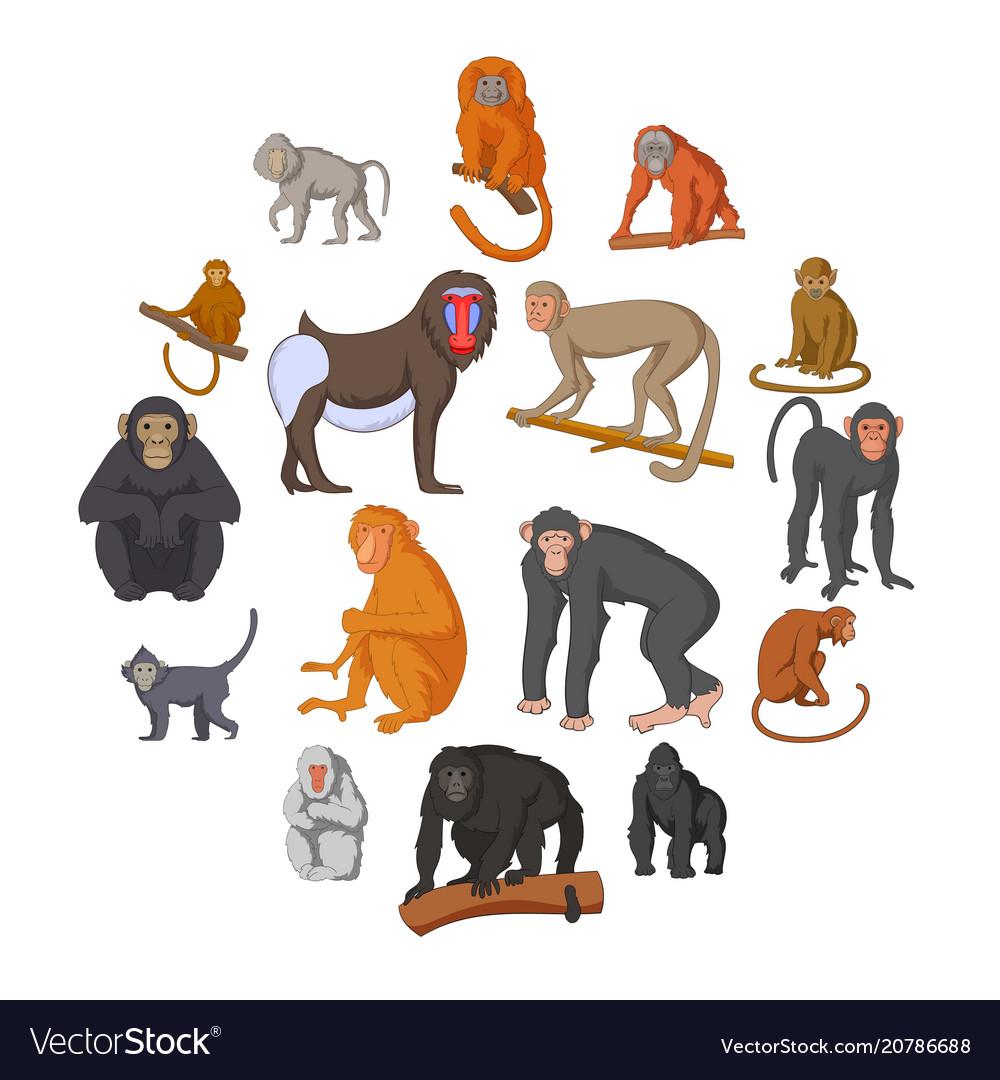 Different monkeys icons set cartoon style