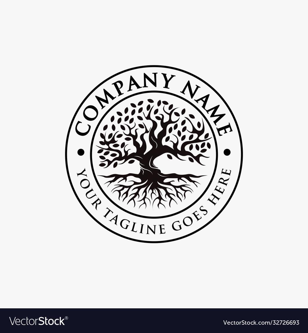 Vintage tree life logo old oak tree logo
