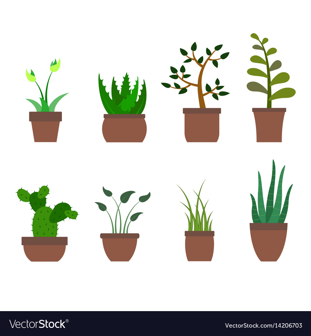 Color set with house plants icons