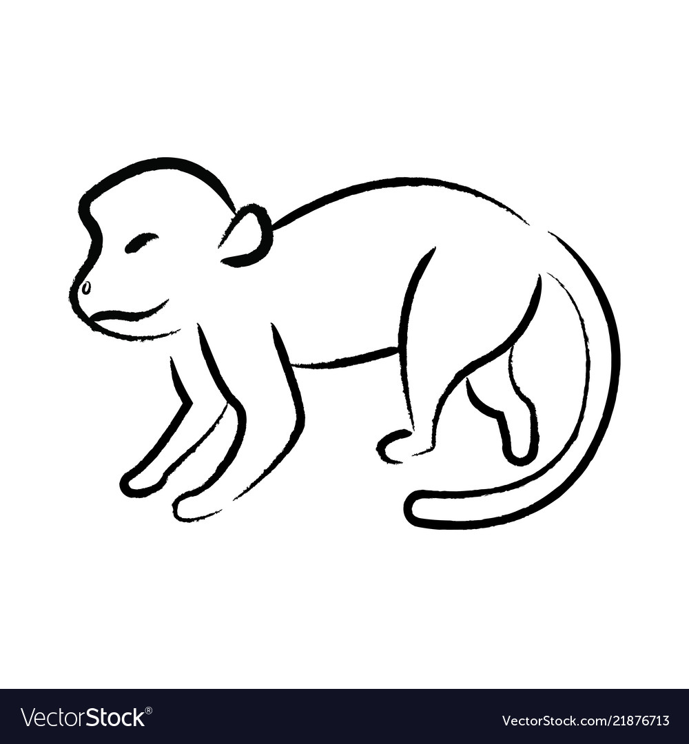 outline draw monkey royalty free vector image vectorstock