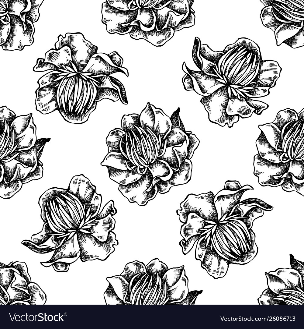 Seamless pattern with black and white globeflower