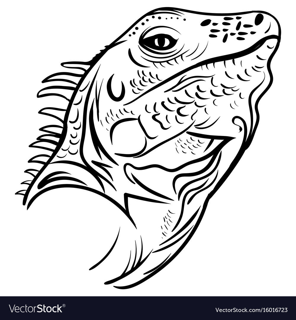 Head iguana profile sketch tattoo vector image