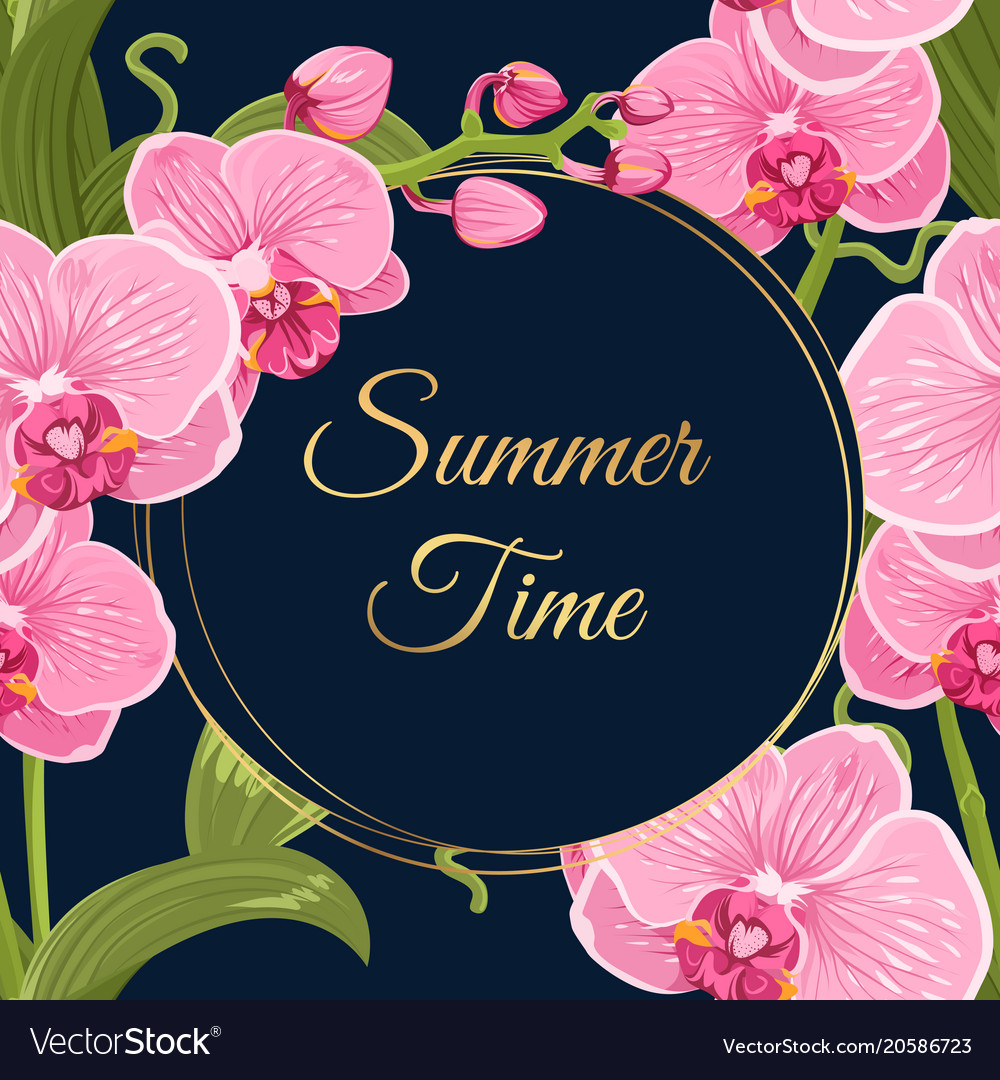 Summer Time Wreath Frame Pink Orchid Flowers Card Vector Image