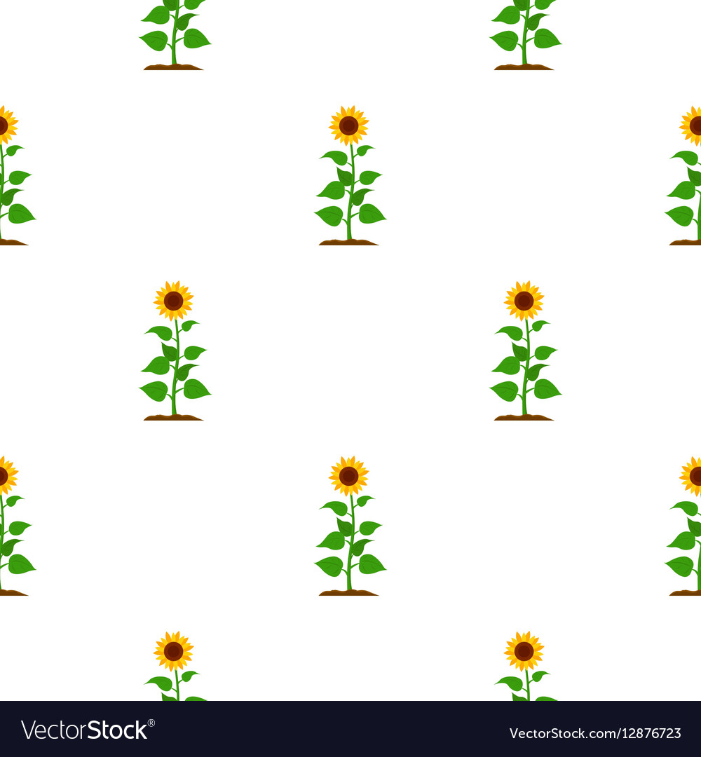 Sunflower icon cartoon Single plant icon from the